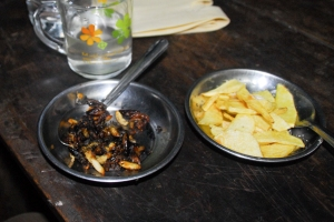 A more unusual dish of fried crickets and maggots.