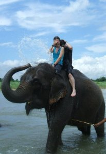 Taking an elephant bath